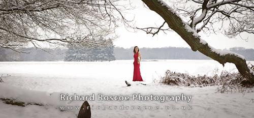 Ashridge Winter Portraits